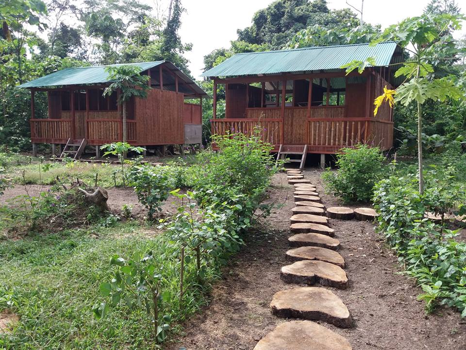 Manu Green Lodge